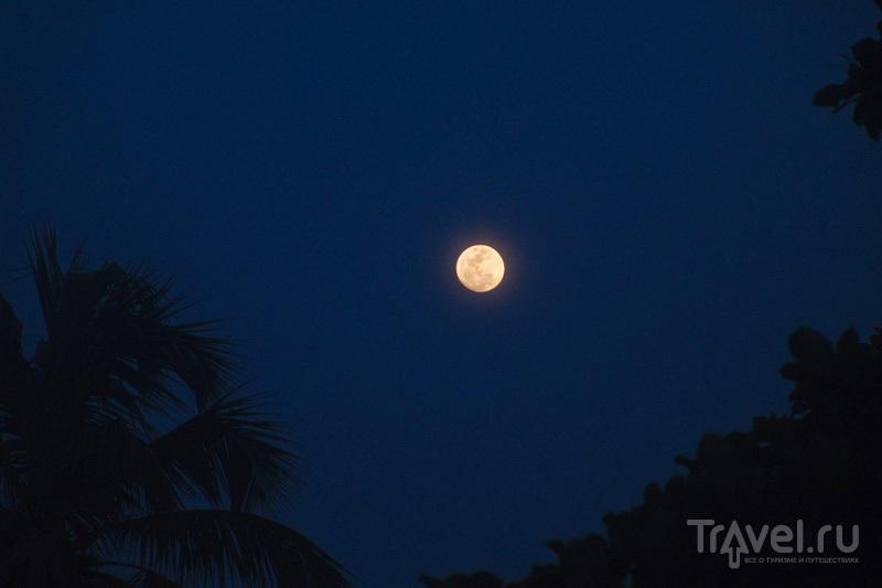 Лунная ночь / Индия