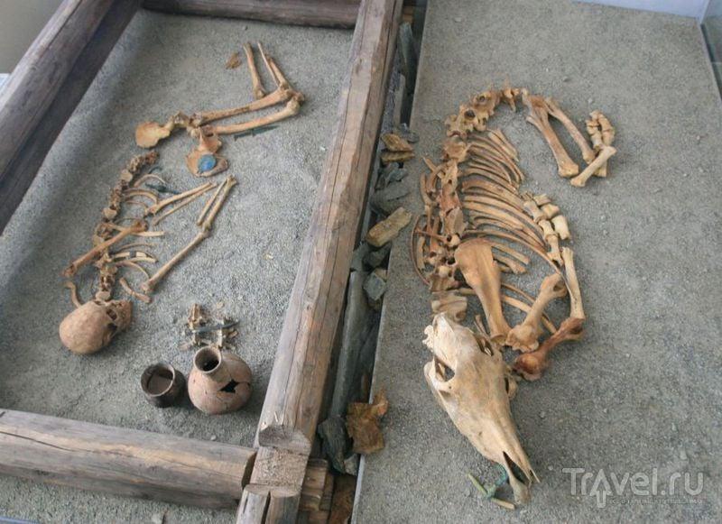 Образец могильника / Россия
