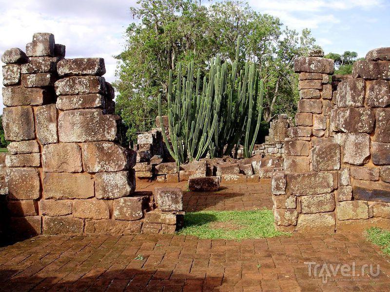 И на камнях будут кактусы расти / Аргентина