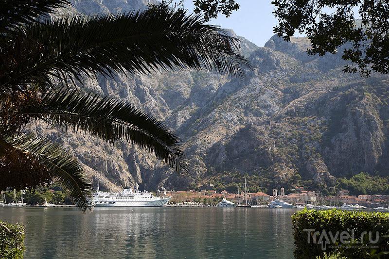 Корабли в Которской бухте, Черногория / Фото из Черногории