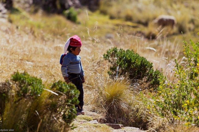 Молодое поколение / Перу