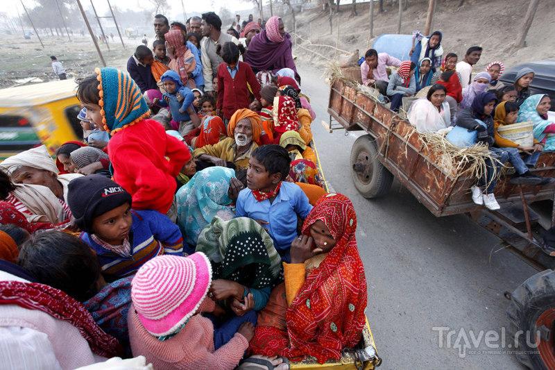 Паломники прибыли на тракторах / Индия