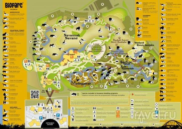 Карта Биопарка / Испания