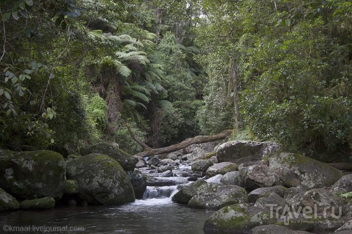 Национальный парк Ламингтон / Австралия