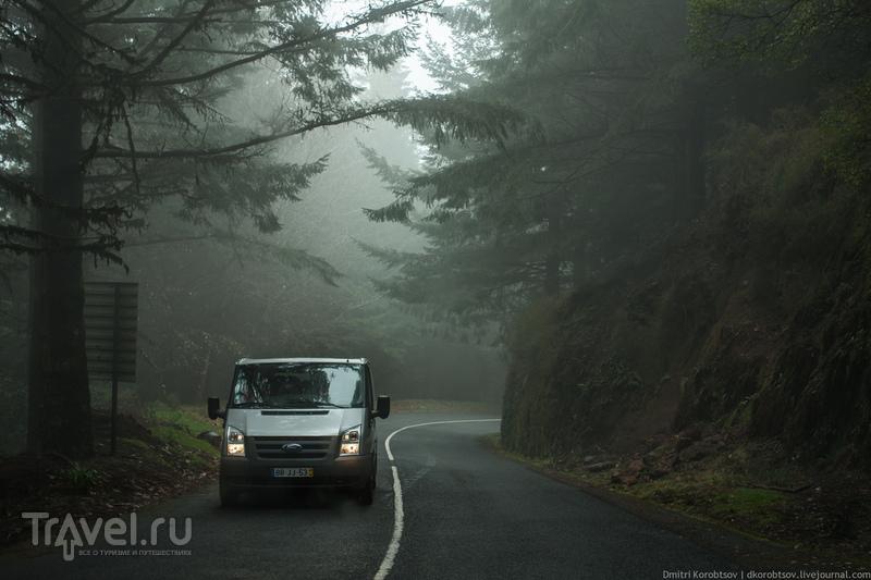 Дорога до Рибейро Фрио / Португалия