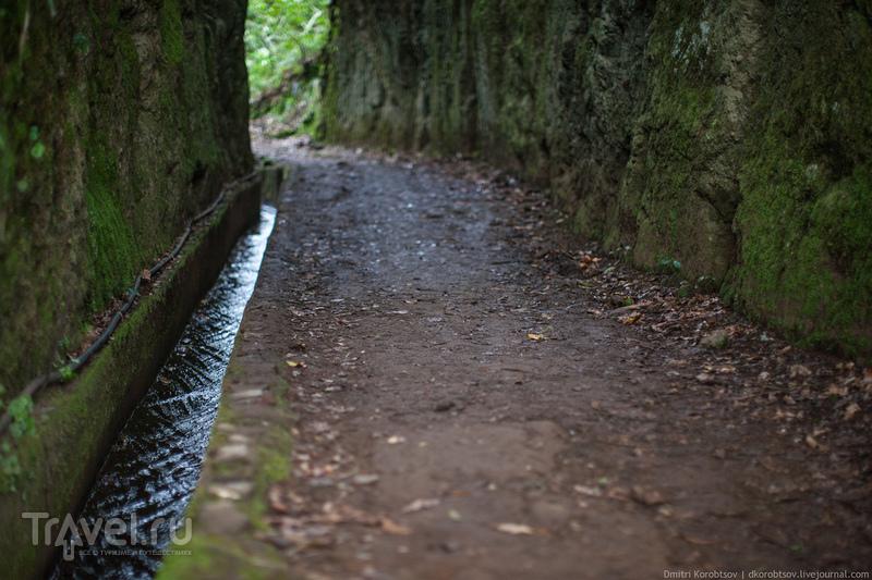 Дорога проходит через расщелину / Португалия