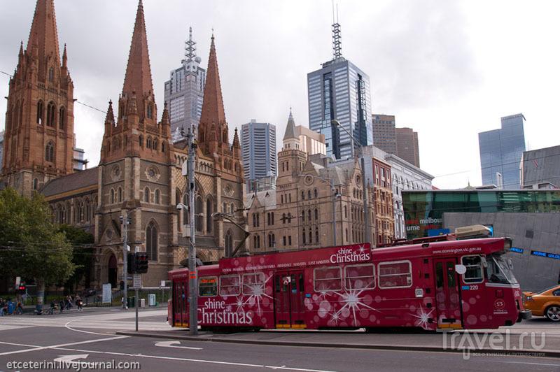 Трамвай в Мельбурне / Фото из Австралии