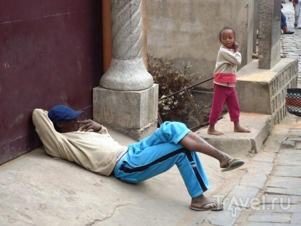 Неторопливый местный житель / Мадагаскар