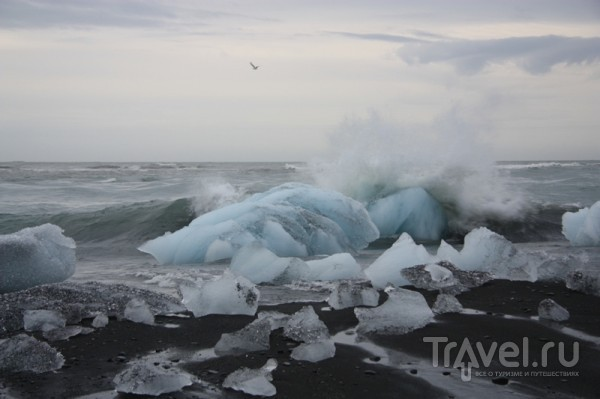 Светящиеся синим цветом айсберги / Исландия
