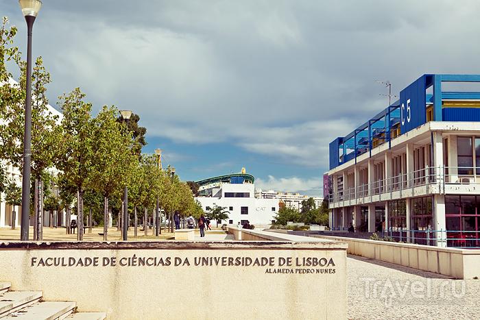Университет в Лиссабоне / Португалия