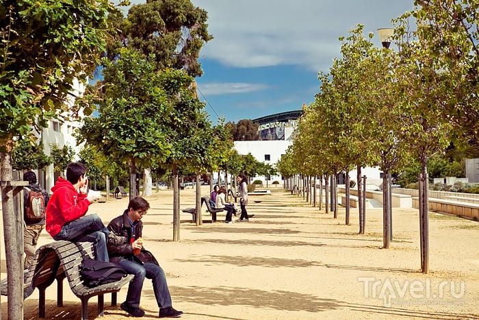 Студенты без формы / Португалия