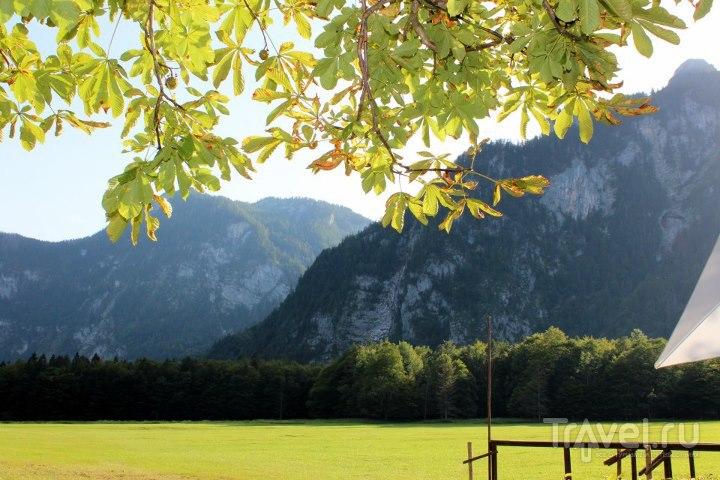 Поля и горы / Австрия