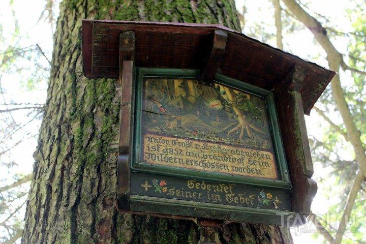 Табличка в лесу / Австрия