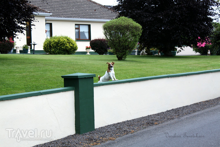 Гулять по Карроумор / Ирландия