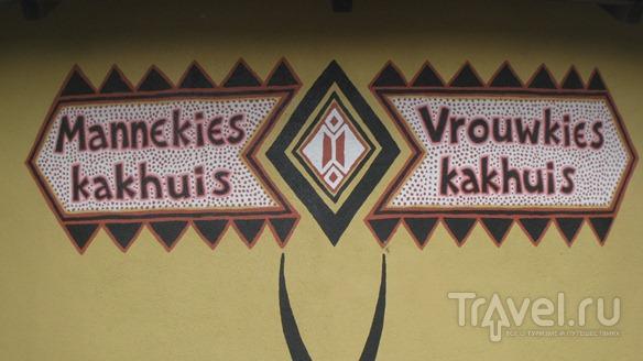 Голландия: сафари, дети и фрикандел / Нидерланды