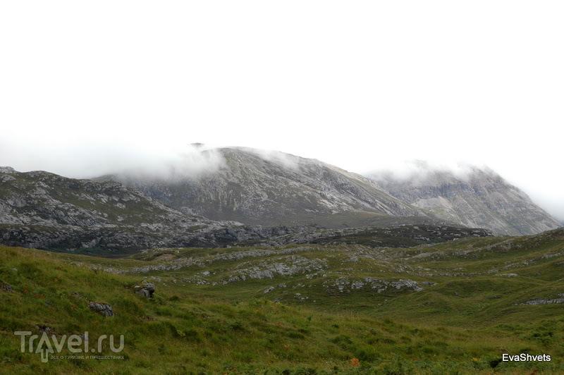 Viewpoint Drumberg и Kulesky / Великобритания