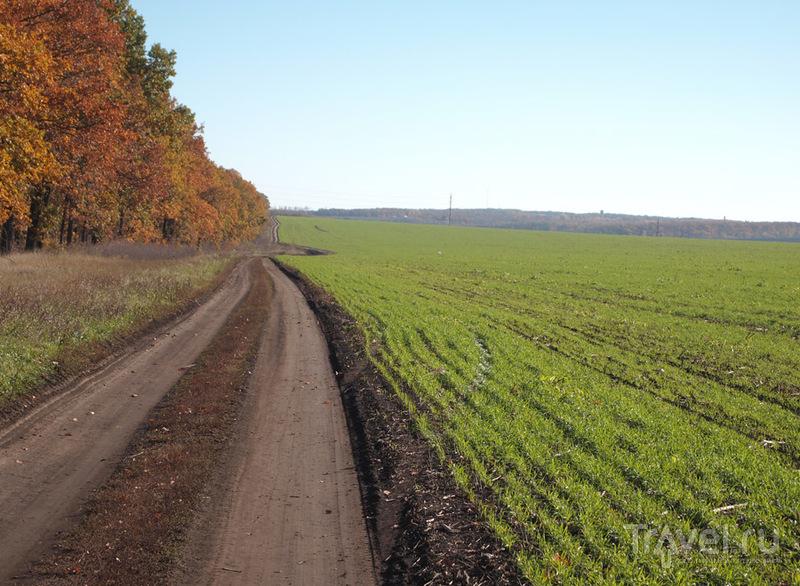 Воскресный велорайд / Украина