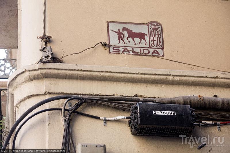 Солнечная Каталония: прогулка по Барселоне / Фото из Испании