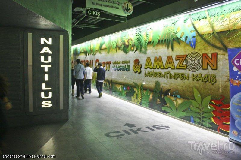 Стамбульский Аквариум / Турция