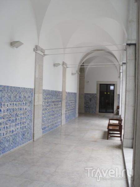Португалия. Про гостиницу, институт и сельское хозяйство / Португалия