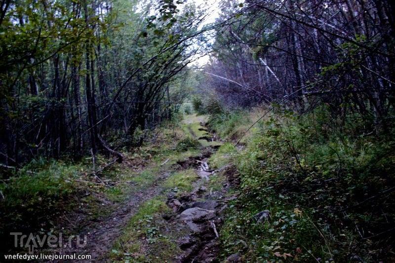 Тункинская долина, Бурятия / Фото из России