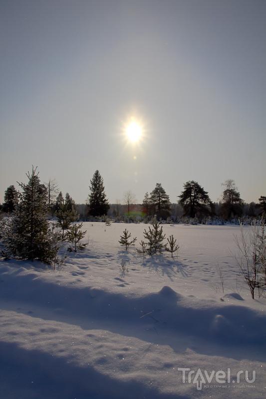 По зимней Пинеге (Архангельская область) / Фото из России