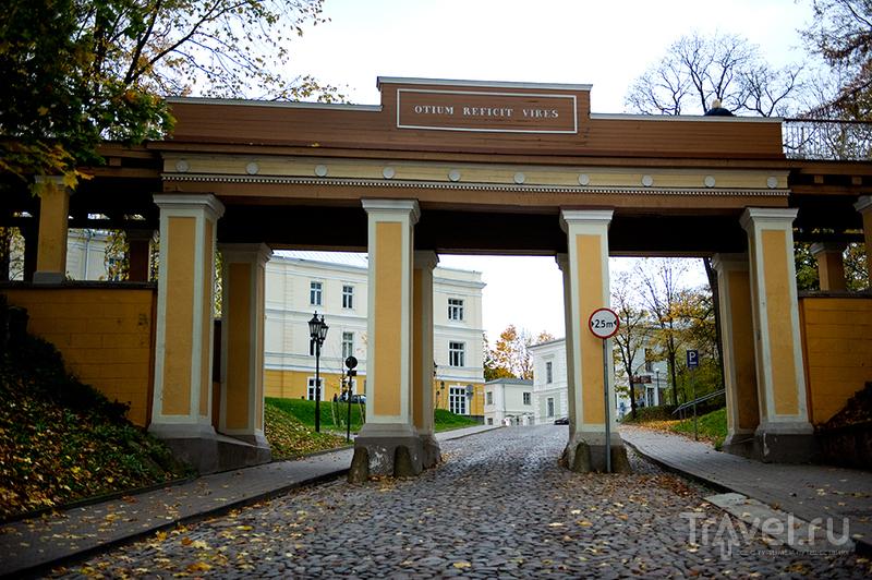 Осенний Тарту / Эстония