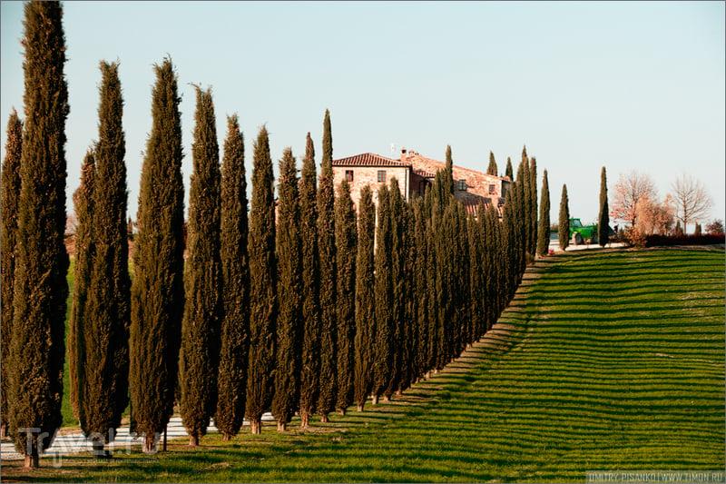 Немного классической Тосканы / Италия