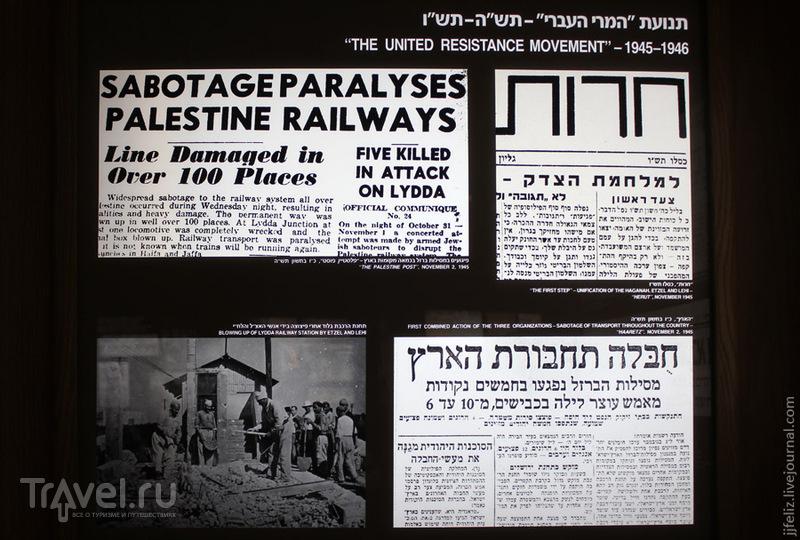 Музей Эцель в Тель-Авиве / Фото из Израиля