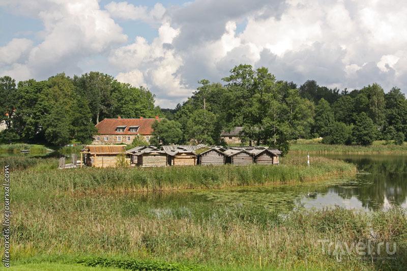 Озерный замок Арайши: реконструкция поселения 9-10 вв. балтийского племени латгалов / Латвия
