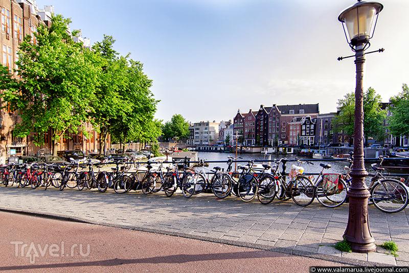 Голландия большие красивые попы женщин, пирсинг писечек фото