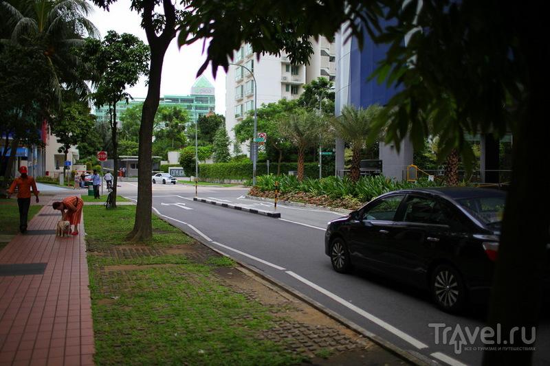 Сингапур: День первый / Сингапур