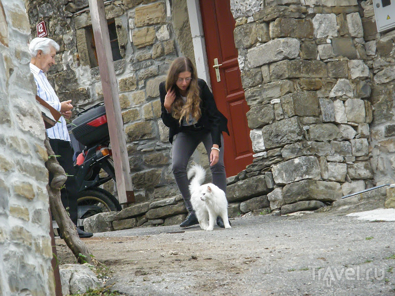 Кркавче / Фото из Словении