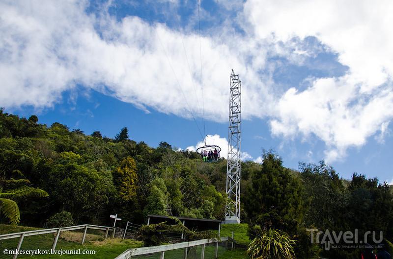 Новая Зеландия. Киви и маори / Фото из Новой Зеландии