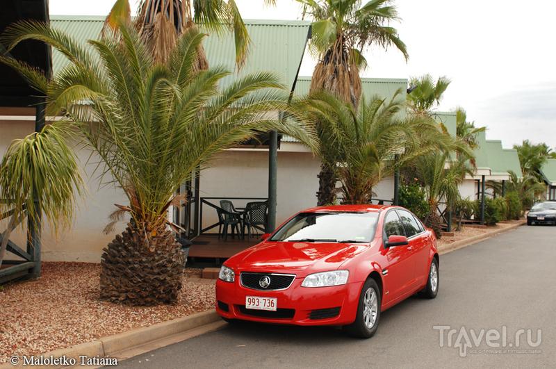 Австралия 2012. Из Элис-Спрингс в Улуру / Фото из Австралии