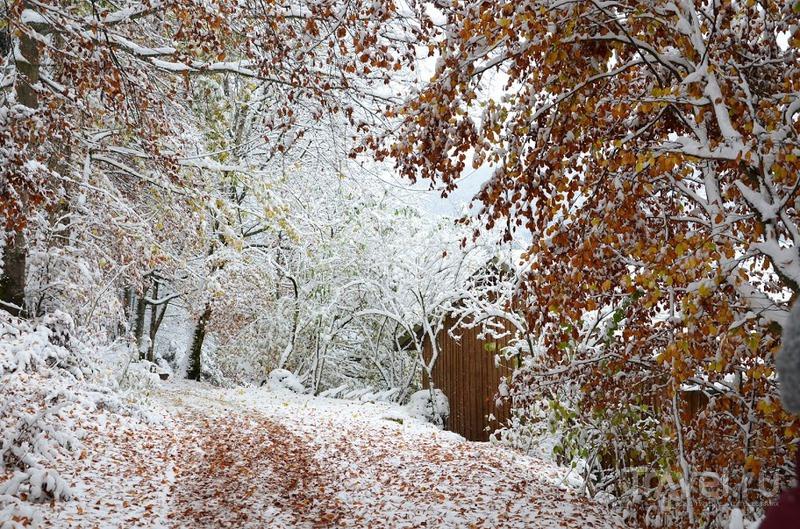 Неожиданная зима в октябре. Германия-Австрия-Чехия / Чехия
