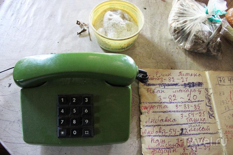 Як жыве зона или чернобыльский мохито / Фото из Белоруссии