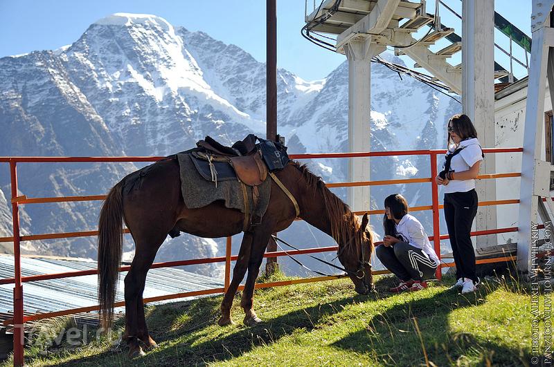 Эльбрус, Домбай, Чегет: Кавказ и его горы... / Россия