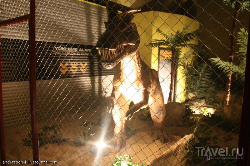 Стамбульский Jurassic Land / Фото из Турции