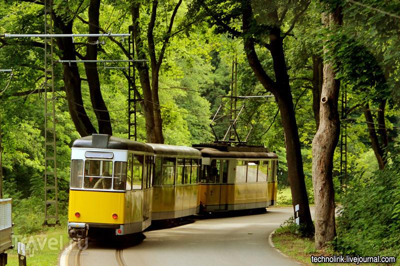 """Кирничтальбан - трамвай в национальном парке """"Саксонская Швейцария"""" / Фото из Германии"""