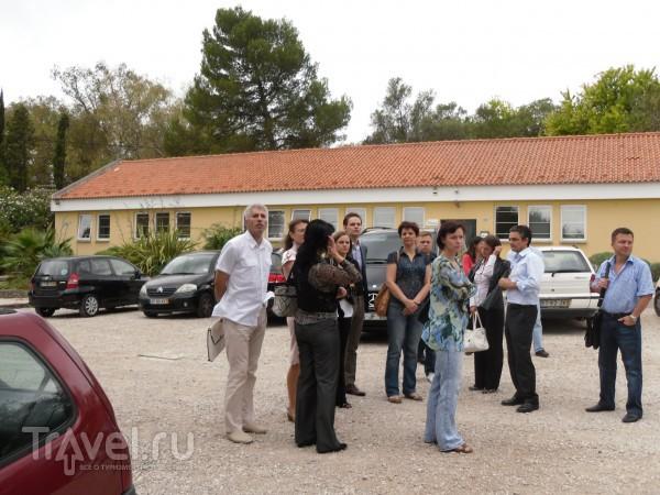 В гости к виноделам / Португалия