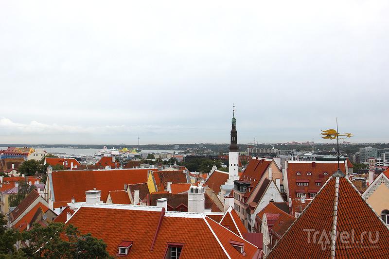 Таллин / Эстония
