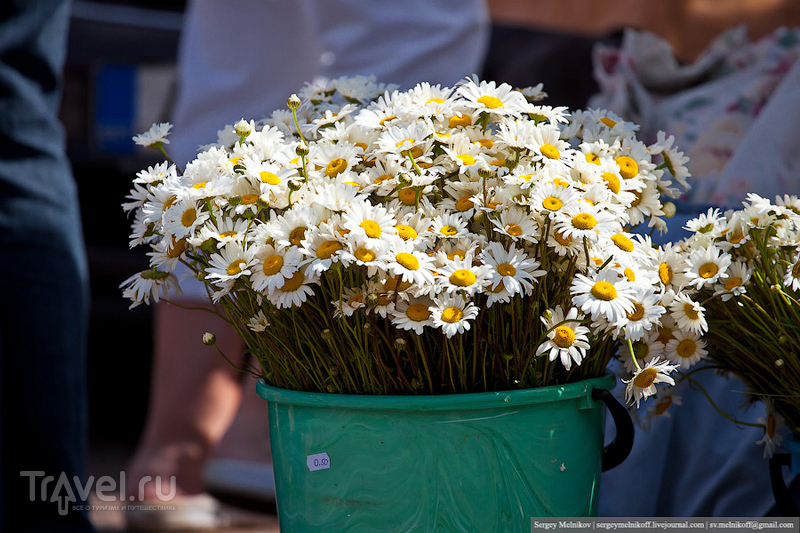 Блошиный рынок в Таллине / Эстония