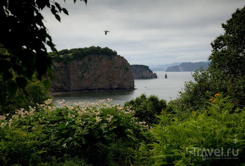 Камчатка. На берегу Тихого океана / Россия
