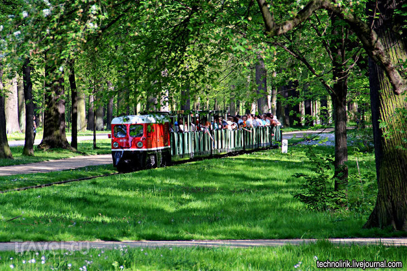 Дрезденская детская железная дорога в центральном городском парке / Германия