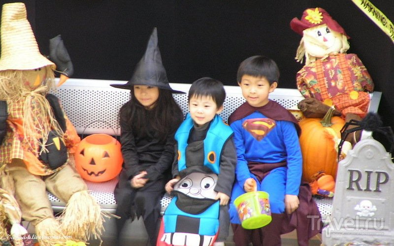 Хэллоуин в Нью-Йорке: от рассвета до заката / США