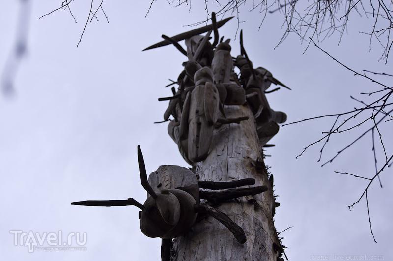 Вселенский разум и другие штуки в Калужской области / Россия