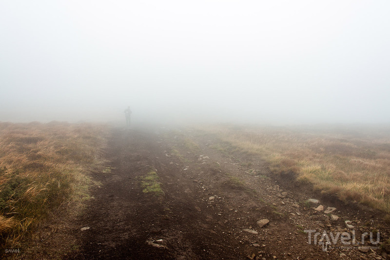 Осень в горах Украины. Карпаты / Украина