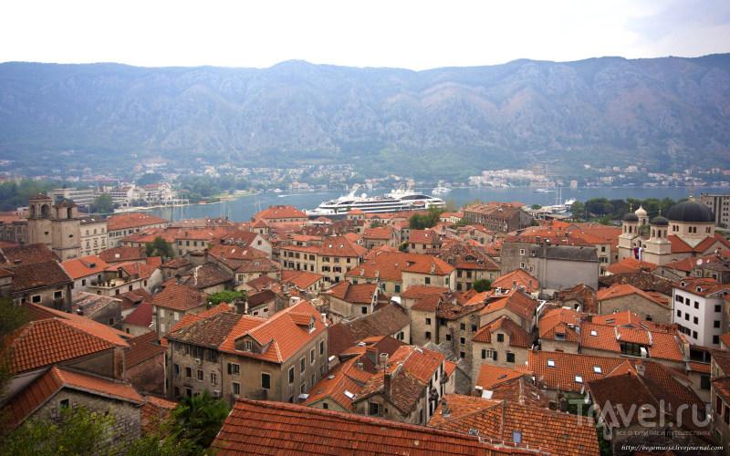 Котор. Черногория / Черногория