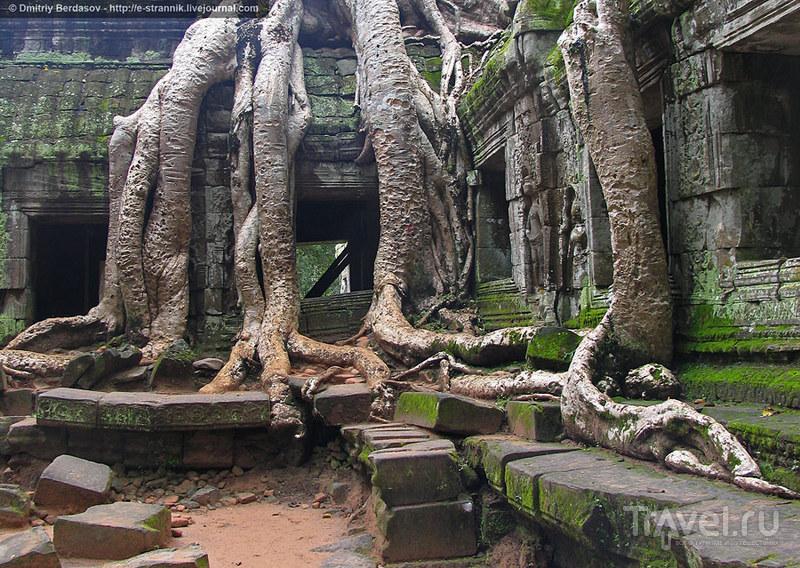 Королевство Камбоджа. Ангкор / Камбоджа